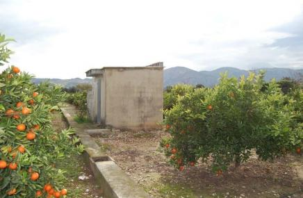 Casita and Plot in Pego