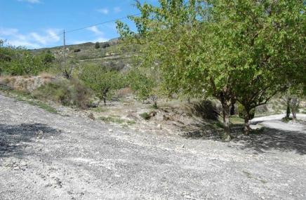 Plot in Vall de Gallinera