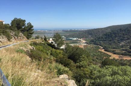 Plot in Monte Pego